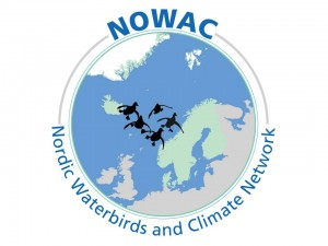 NOWAC logo